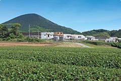 直営農場の千綿ファーム