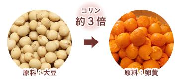 コリン約3倍 大豆と卵黄