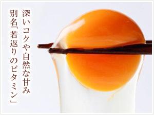 当社自慢の九州産ブランド自然卵「太陽卵」