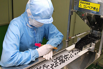 製造工場での品質チェック、一粒一粒、丁寧に調べています!